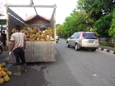 Setengah jalan, setengah durian